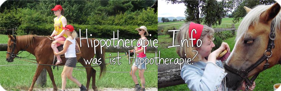 Hippotherapie Info